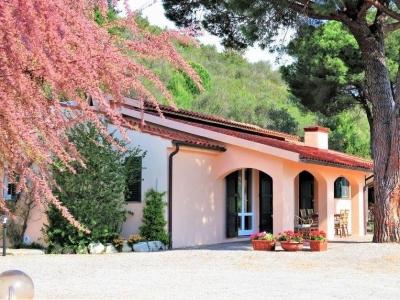 Case Toscane Agenzia Immobiliare : Immobili in vendita toscana mare vendita immobili toscana mare